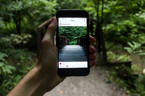 person capturing video of forest on iphone